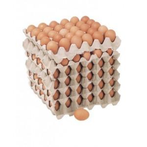 Huevos Extra Color (180 unidades)